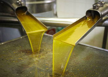 Huile-d'olive