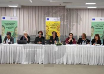 La-lutte-contre-la-discrimination-et-la-violence-à-l'égard-des-femmes-dans-les-législations-